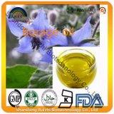 en el petróleo de la borraja de la fuente a granel para los suplementos alimenticios de la piel
