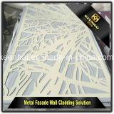 Meilleur rapport qualité prix d'usine décoratifs en métal panneau tôle perforée clôture en aluminium