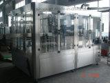Automatisch Vers Fruit 2000bph/de Hete Machine van het Flessenvullen van het Sap