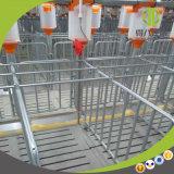 튼튼한 돼지 농기구 사슬 디스크 공급 시스템 필요 에이전트