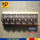 Dieselmotor zerteilt (1-11110-601-0 1-11110-601-1) 6bd1 Zylinderkopf für Isuzu