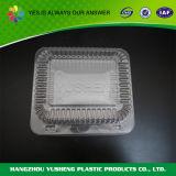 Cristallo di plastica - contenitori liberi dell'animale domestico