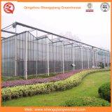 Сельское Хозяйство Многопрофильный Поликарбонатный Лист Зеленый Дом для Овощей