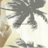 [100بولستر] دولفين [بيغمنت&ديسبرس] يطبع بناء لأنّ [بدّينغ] مجموعة