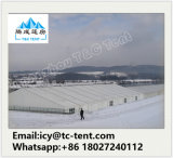 Tenda trasparente di cerimonia nuziale delle 500 genti con il tetto libero da vendere