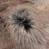 Tessuto a riccio lungo della pelliccia artificiale di Faue di falsificazione della pelliccia del mackintosh con il mackintosh