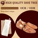 [لونغ ليف] خشبيّة حذاء شجرة على نحو واسع يستعمل