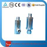 Válvula de fluxo adicional criogênica de GNL do aço inoxidável