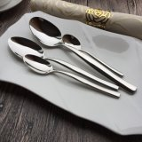 18/10 cuillère Polished de vaisselle plate de vaisselle de miroir d'acier inoxydable