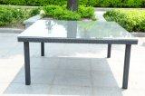 Rotin Ensemble de salle à manger/salle à manger en plein air Set (SC-A7270)