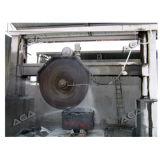 Le CNC tailleur de pierre de la machine pour le bloc de coupe en tranches
