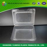Verpakkende Doos van het Fruit van de Container van het Voedsel van de blaar de Plastic