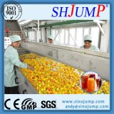 Chaîne de production de purée de mangue