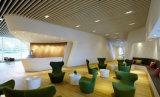 Bed de Matrijs van het Plafond Gegoten Aluminium in 4 LEIDENE van de MAÏSKOLF van de Duim 12W Downlight