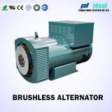 AVR制御を用いるブラシレス同期交流発電機(発電機)の自己刺激