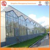 Дом листа PC/листа поликарбоната зеленая с системой вентиляции