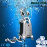 Verticale Cryolipolysis 4 de Machine van de Schoonheid van het Vermageringsdieet van het Lichaam van Handvatten
