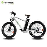 Vélo électrique de grosse neige de pneu pour l'exercice de montagne