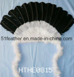 Indian Feather (parti de coiffure, célébrant, costume)