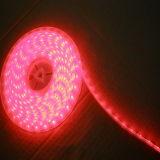 LED 스트립 R/G/B/Y/W