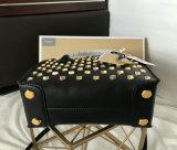 Borsa di cuoio delle donne della borsa dello stilista del sacchetto di Aimali delle signore calde di vendita