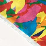 fashion 숙녀 스크린 인쇄 실크 스카프 (SC017)