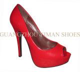 Chaussures de mode pour le femme (YMD001013-01)