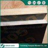 15mm 18mm M. Laminated Cheap Marine Plywood 4X8 voor het Concrete Gebruik van de Bouw