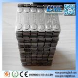Magneten van de Aarde van het Kenteken van de Naam van de Magneten van de Aarde van magneten de Goedkope Achter Achter