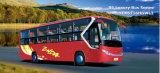 贅沢なバス(YCK6116HGWL3)