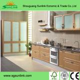 Form-Entwurfs-hölzernes Wandschrank-Schrank-Schlafzimmer, das Spiegel-Garderoben-Türen schiebt