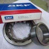 SKF rodamientos de rodillos cilíndricos