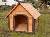 De Kennel van de hond (pcdh-D0061)