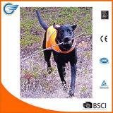 Hola el chaleco del perro del Vis protege perros contra los coches y la caza