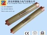 Corrente de alta tensão que limita o fusível para a proteção do Short-Circuit do transformador Oil-Immersed