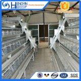 Цыплятина оборудования фермы цыпленка наслаивает клетку