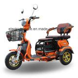 Triciclo motocicleta eléctrica para 2 adultos
