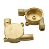Bronze do OEM e carcaça feitos sob encomenda do bronze com fazer à máquina