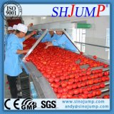 La pâte de tomate Brix 36-38 % en sac aseptique tambour 220L