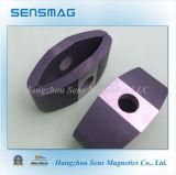 Aangepaste Permanente Gesinterde Magneet AlNiCo2