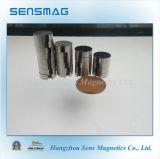 De permanente Magneet van de Cilinder van de Magneet N42