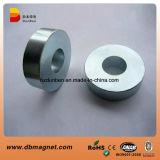 N35 N38 N42 N45 N48 N52 de Gesinterde Fabrikant van de Magneet van het Neodymium