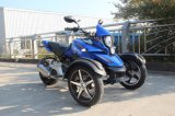 Trike 200cc Tricycle VTT Quad Bike 250cc 3wheeler Vélo VTT