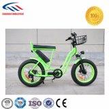 Bicicleta eléctrica del surtidor directo de la fábrica del estilo de la manera