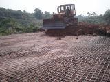 Polypropylen Geogrid für Bodenbewegung-Aufbauten