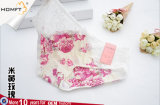 La caramella progetta le mutandine belle di seta della biancheria intima delle ragazze del latte Colourful del merletto