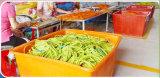 Personnaliser les bandes de latex de caoutchouc naturel de la résistance avec poignées mousse réglable