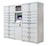 Standard Combined DBS Parcel Delivery Locker