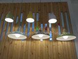 De populaire Nieuwste Lamp van de Tegenhanger van het Aluminium van de Verlichting van het Ontwerp Hangende voor de Decoratie van de Eetkamer