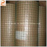 С покрытием из ПВХ сварной проволочной сетки/ сварные квадратные проволочной сеткой